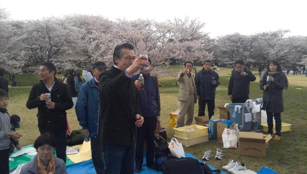 4/6 お花見イベント ご報告