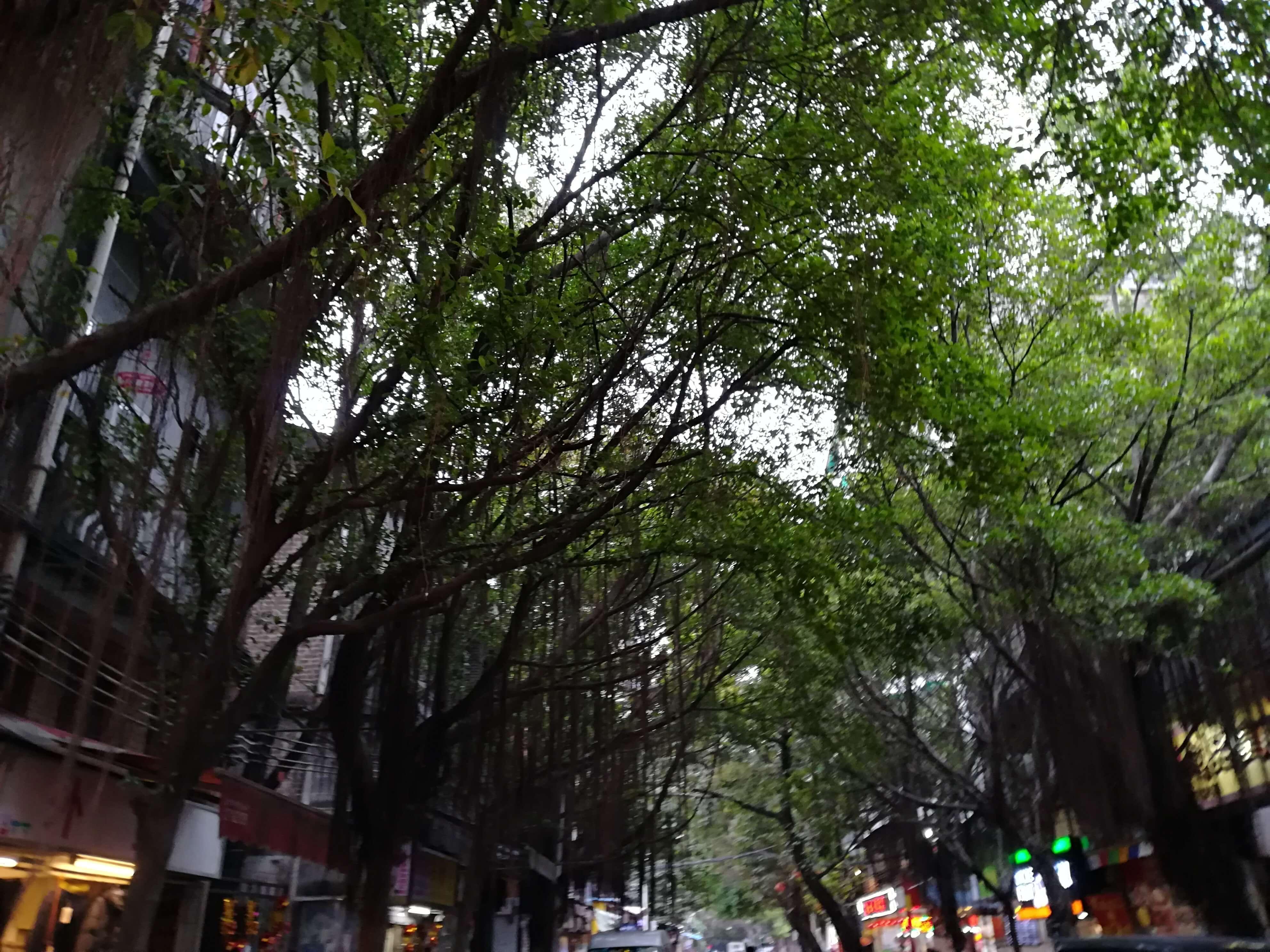 写真に見る中国の変化と新旧!深圳、広州~街の姿、庶民生活