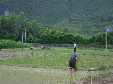 中国全土が均一化された街へあと30年、50年後その風景と心の癒しは・・